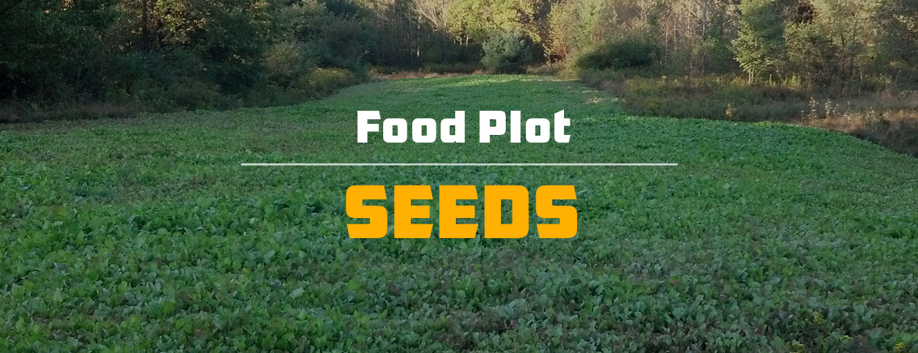 Food Plot Seeds